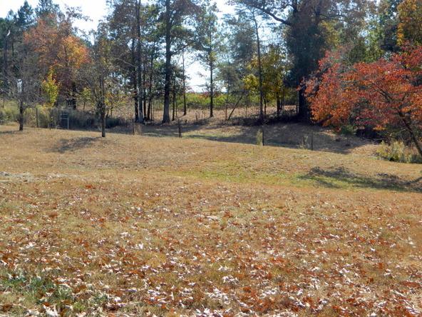 526 County Rd. 139, Bryant, AL 35958 Photo 163