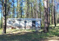 Home for sale: 10 County Rd. 2153, Alpine, AZ 85920