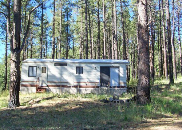 10 County Rd. 2153, Alpine, AZ 85920 Photo 1