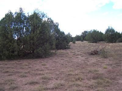 1805 W. Cumberland Parcel J Rd., Ash Fork, AZ 86320 Photo 2