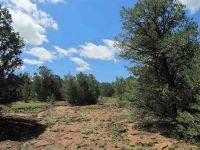 Home for sale: Lot T Hidden Valley Ranch Rd., San Ysidro, NM 87538