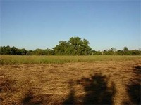 Home for sale: 22651 Kane Rd., Gravette, AR 72736