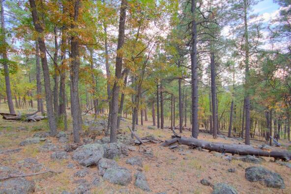 8100 W. Dk Ranch Rd., Flagstaff, AZ 86005 Photo 19