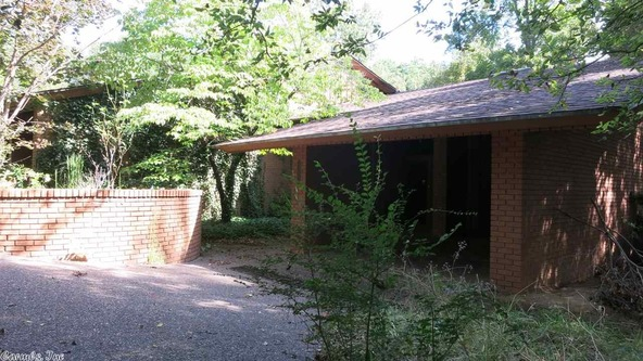 1 Lotus Ln., Cherokee Village, AR 72529 Photo 2