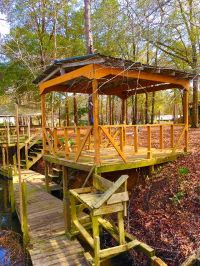 Home for sale: 156 Pat's. Camp Rd., Vienna, GA 31092