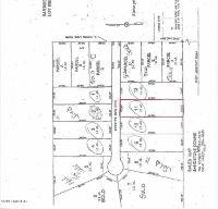 Home for sale: Lot 11 Sandstone Dr., Wayland, MI 49348