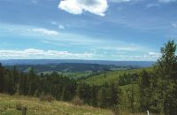 Home for sale: 0 Scully Creek Rd., Cottonwood, ID 83522