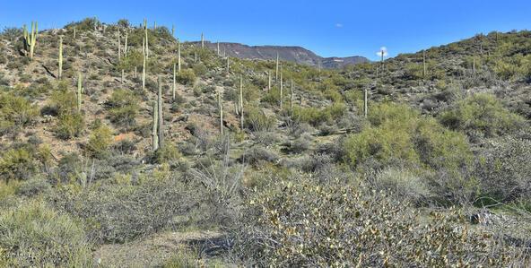45 N. Cottonwood Canyon Rd., Cave Creek, AZ 85331 Photo 6