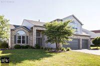 Home for sale: 26926 W. Locust Rd., Channahon, IL 60410
