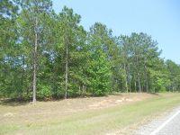 Home for sale: 00 Old Savannah Rd., Vidalia, GA 30474