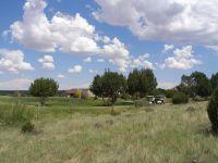 Home for sale: 1956 Creek Side Cir., White Mountain Lake, AZ 85912