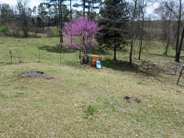 111 Hwy. 49, Russellville, AL 35653 Photo 10