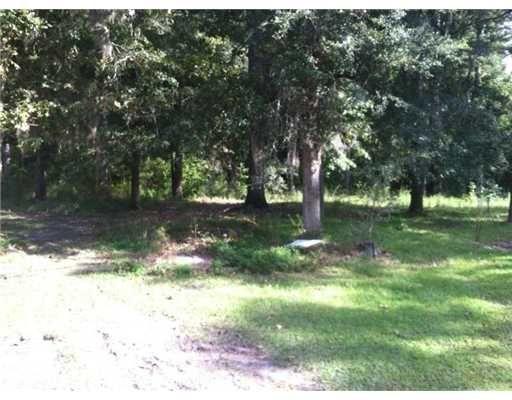 0 Old Sunbury Trail, Midway, GA 31320 Photo 6