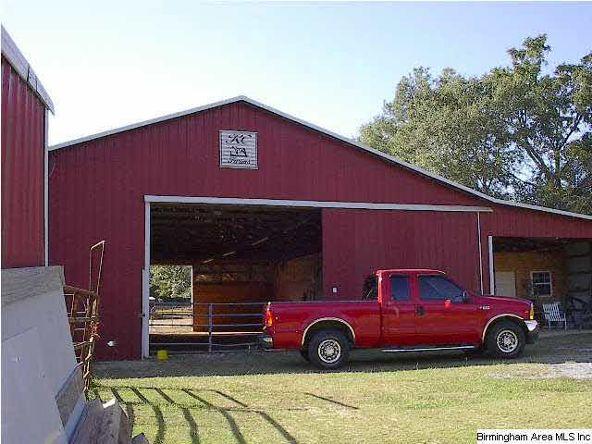 357 Co Rd. 49, Rockford, AL 35136 Photo 6