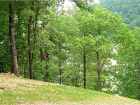 Home for sale: Lot 1 Edgewater Dr., Rogers, AR 72756