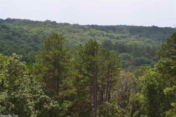 23840 Mashburn Trail, Little Rock, AR 72210 Photo 14