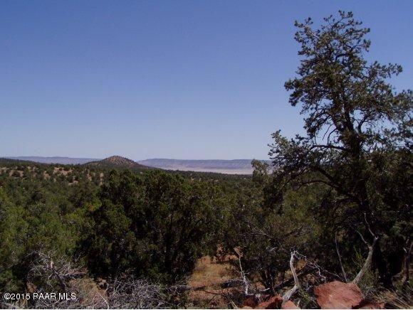 1024 Sierra Verde Ranch, Seligman, AZ 86337 Photo 13