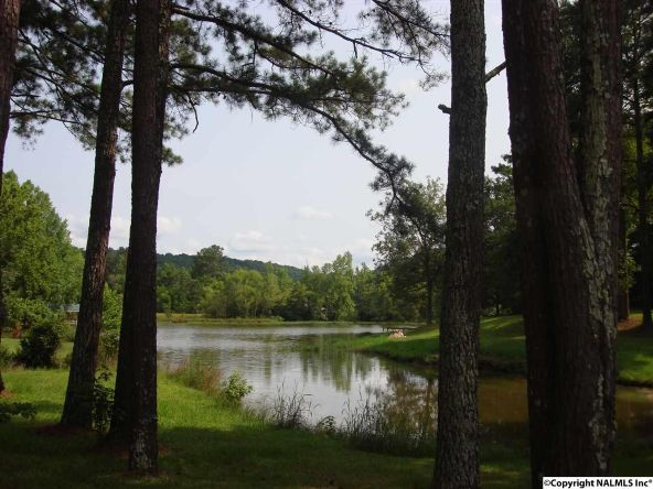 360 River Pl., Gadsden, AL 35901 Photo 5