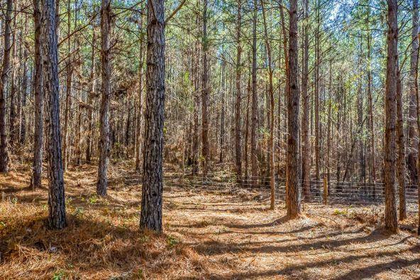 1227 Pine Rd., New Site, AL 36256 Photo 65