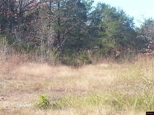 550 Mc 2031, Lead Hill, AR 72644 Photo 9
