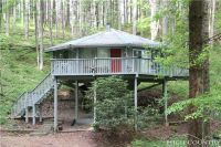 Home for sale: 314 Four Coves Trail, Crumpler, NC 28617