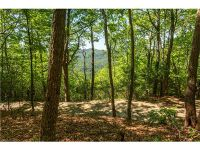 Home for sale: Lot 67 Bear Paw Dr., Brevard, NC 28712