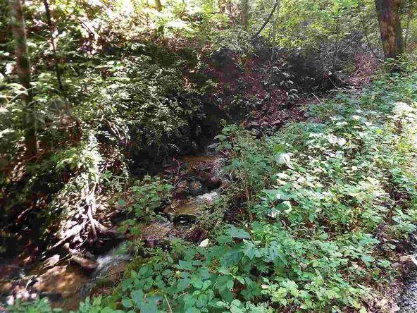 Lots 537 & 538 Deep Hollow Rd., Gatlinburg, TN 37738 Photo 34