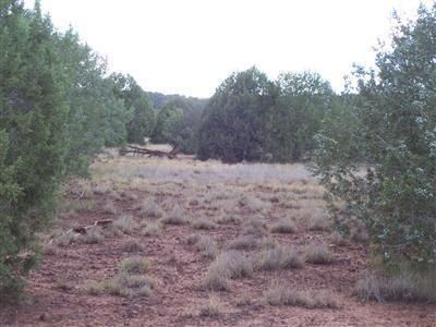 1805 W. Cumberland Parcel J Rd., Ash Fork, AZ 86320 Photo 11
