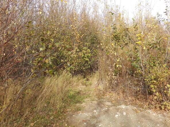 2677 E. Beech Way, Wasilla, AK 99654 Photo 19