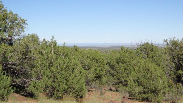 514 Westwood Ranch Lot 514, Seligman, AZ 86337 Photo 3