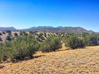 Home for sale: Cerrillos, Cerrillos, NM 87010