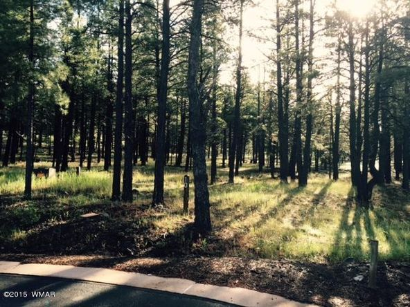 9580 Sierra Springs Way, Pinetop, AZ 85935 Photo 21