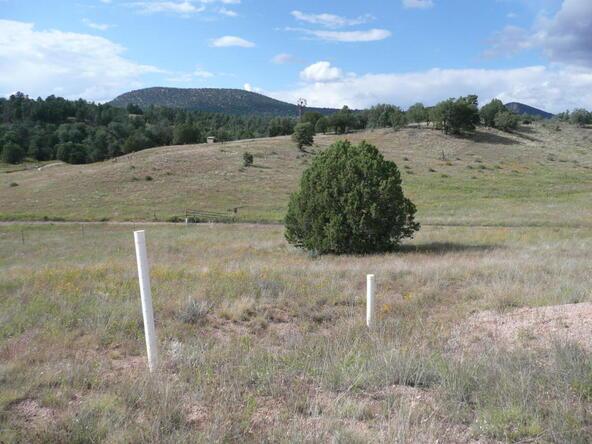 290 N. Navajo Trail, Young, AZ 85554 Photo 19