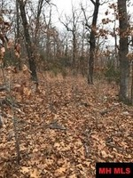 Home for sale: 00 Pilots Cove Ln., Yellville, AR 72687