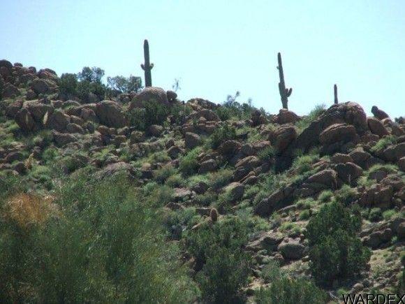 3578-A E. Desert Willow Dr., Yucca, AZ 86438 Photo 1