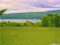 Home for sale: 4492 Nys Route 14 Lot 2, Starkey, NY 14837