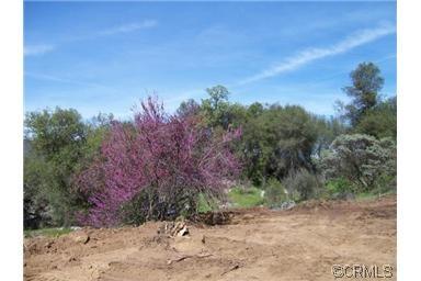 0 Blue Bonnet Ln. Lot 8, Mariposa, CA 95338 Photo 14