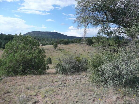 290 N. Navajo Trail, Young, AZ 85554 Photo 4