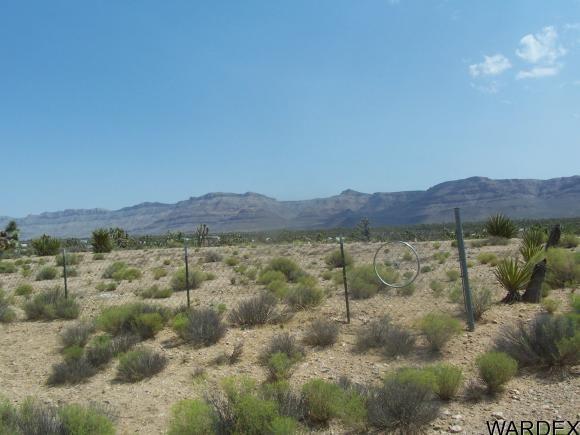 27212 N. Driftwood Dr., Meadview, AZ 86444 Photo 4