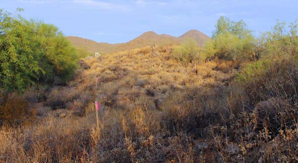 15233 N. Alvarado Dr., Fountain Hills, AZ 85268 Photo 9