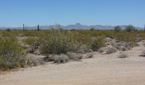 3xx N. 557th Avenue, Tonopah, AZ 85354 Photo 8