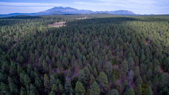 8100 W. Dk Ranch Rd., Flagstaff, AZ 86005 Photo 5