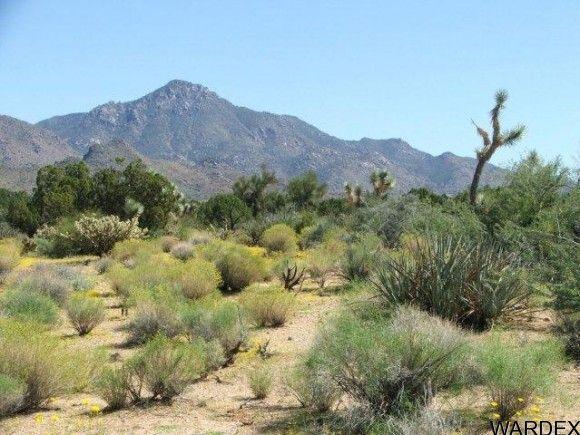 3578-A E. Desert Willow Dr., Yucca, AZ 86438 Photo 6