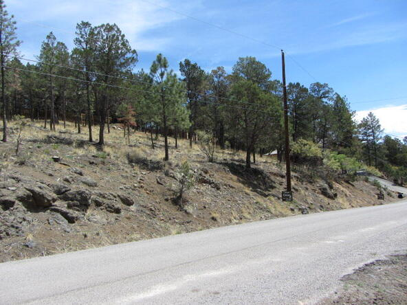 112 Chiracahua Ln., Ruidoso, NM 88345 Photo 20