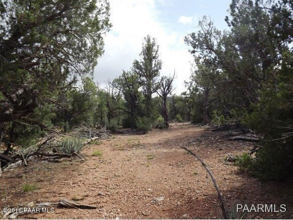 1449 Off Of Big Dip Rd., Seligman, AZ 86337 Photo 7