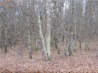 Home for sale: Lot 5 Ice Rd., Webb Lake, WI 54830