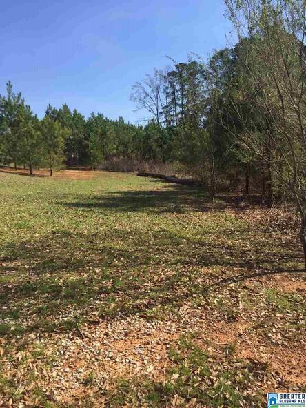 7 Grand Way, Talladega, AL 35160 Photo 4