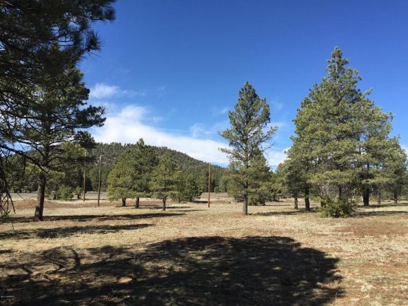 3602 E. Mountain Man Trail, Williams, AZ 86046 Photo 21