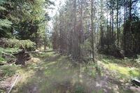 Home for sale: Lot 13 Woodside Ln., Thompson Falls, MT 59873