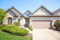 Home for sale: 17 Laughry Ln., Palos Park, IL 60464